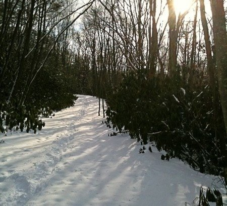 Winter Wonder Glint