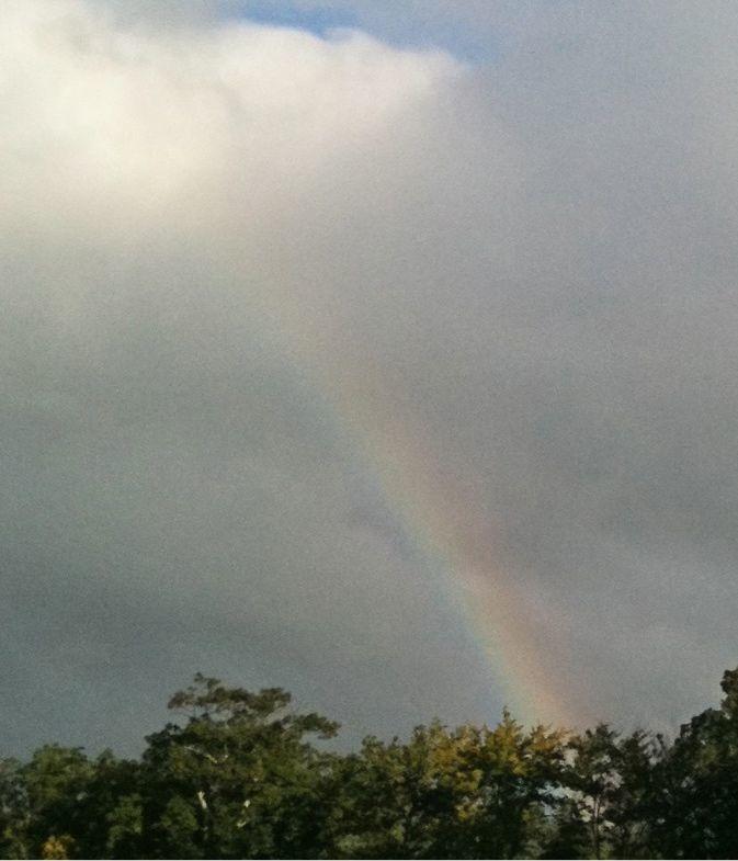 Rain (bow)