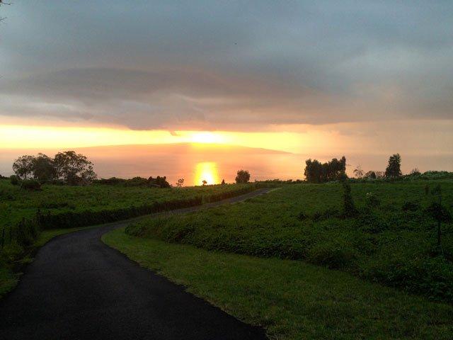 Maui Juicy Sunset