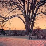 Winter Sunrise By Ryan McGuire