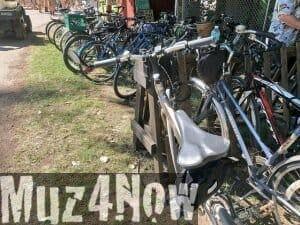 Biking to Grassroots Festival