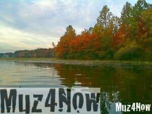 Transformation of autumn