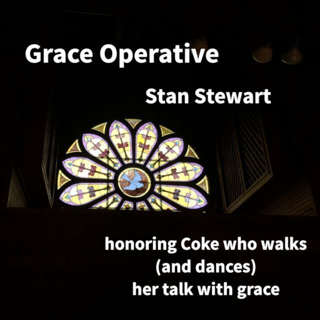 Grace Operative cover
