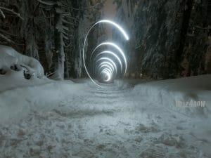 Snowy Treats