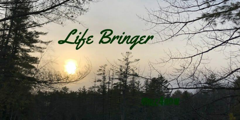 LifeBringer