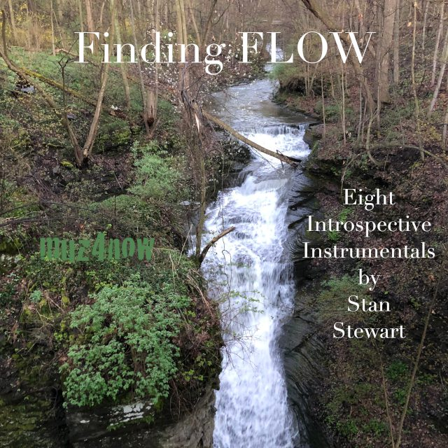 Find Flow cover 2