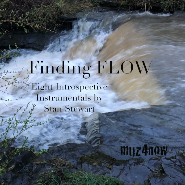 Find Flow cover