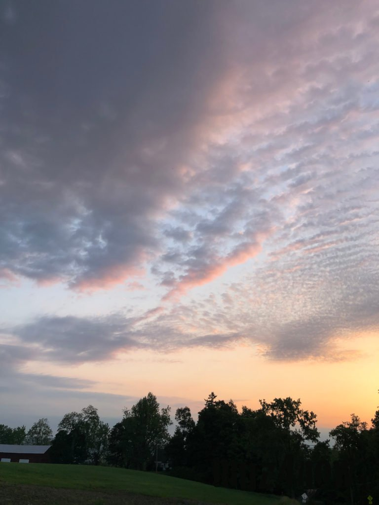Pink Blazing Sunrise