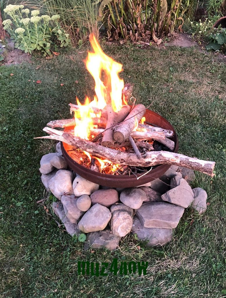 Fire Sane