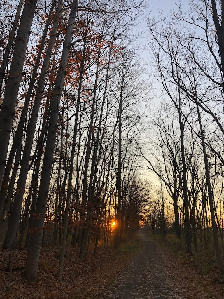 Finding our way - sunrise trail
