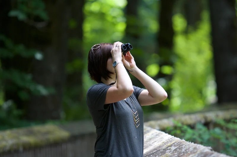 a person in the forest looking through binoculars