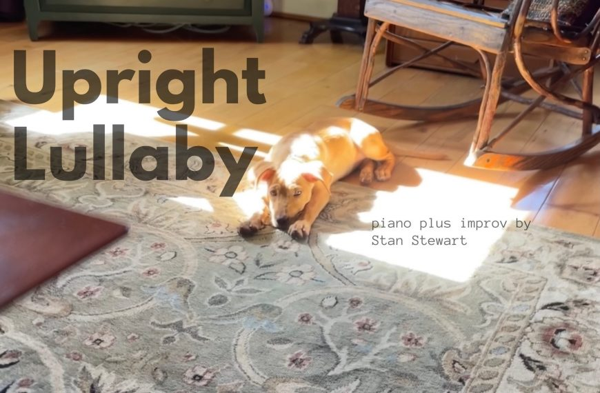 Upright (Puppy Love) Lullaby – #piano #improv