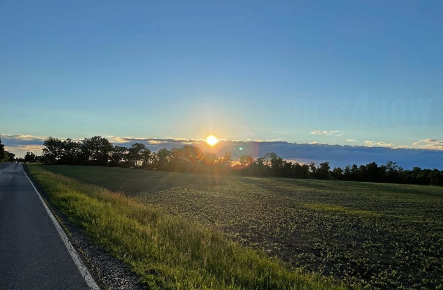 Early Summer Images In The Finger Lakes